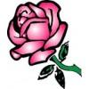 Rose  + $72.00